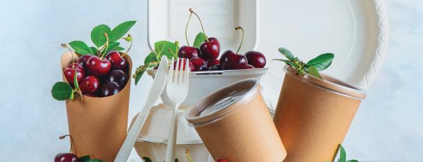 FOOD PACKAGING & HYGIENE SOLUTIONS